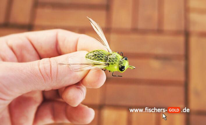 Finesse Cracker Die Fliege